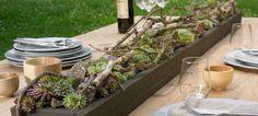 Tisch mit Sukkulenten und Zweigen bei Blooms