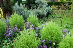 The Cat Garden and Great Dixter