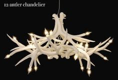 Superordinate Antler Chandelier by Jason Miller for ROLL & HILL - Free Shipping