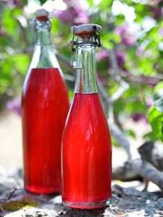 Saft af syrener: 3 citroner, 40 klaser syrenblomster,1,8 kg sukker, 60 g citronsyre, 2½ l kogende vand, ¼ tsk Atamon. Vask citronerne, skær i skiver. Læg blomsterne i en stålskål med sukker, citronsyre, citron. Hæld kogende vand over, og rør så sukkeret bliver opløst. Bland Atamon i lidt af den varme saft, og tilsæt til blandingen. Skal saften ikke opbevares i længere tid, så spring Atamon over. Dæk med husholdningsfilm, og sæt på køl i 3 dage. Si, hæld på rene, skoldede flasker. Opbevar…