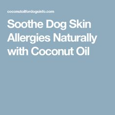 Soothe Dog Skin Allergies Naturally with Coconut Oil