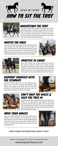 Horseback Riding Tips, Trail Riding Horses, Horse Riding Tips, Horse Tips, Western Horse Riding, Horse Markings, Dressage Horses, Dressage Saddle, Horse Exercises