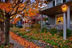Cozy Autumn Evenings