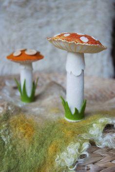Orange Silk Amanita Toadstools