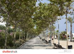 The promenade by the sea. Photo Editing, Spain, Royalty Free Stock Photos, Sidewalk, Illustration, Pictures, Image, Editing Photos, Photos