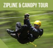 Ontario's Great Outdoor Adventure - Long Point Zip Lines, Vacations and Corporate Retreats - Long Point Eco-Adventures Play And Stay, Adventure Activities, Kayak Fishing, Stargazing, Mountain Biking, Canopy, Wilderness, Kayaking, Ontario