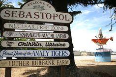 Sebastopol, CA -NOON DRIVE TO SEBASTOPOL - DECEMBER 15, 2007-SEES CHOCOLATES FOR LUNCH, A SCRAPBOOK, A BEGINNING.