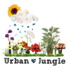 Earth Day 2012- Welcome To Our Urban Jungle