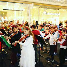 Chavannes event #collegeduleman #show #dance #concert #international #school International School, Concert, Events, Dance, Instagram Posts, Happenings, Dancing, Concerts, Festivals