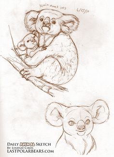 Daily_Animal_Sketch_030