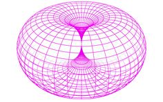 Torus structure of space