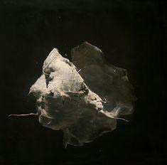 091.jpg (1063×1048) nicola samori paintings sculptures  plastic arts, visual arts, fine arts, art