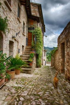 Beautiful Places To Visit, Beautiful World, Travel Around The World, Around The Worlds, Places To Travel, Places To Go, Italy Street, Italy Landscape, Umbria Italy