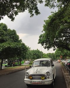This city! So beautiful  #eatoutdevout  Tags:  #Chandigarh #MorningAutos #Punjab #Ambassador