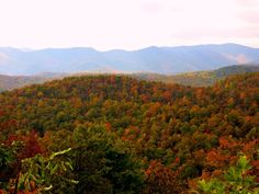 Fall colors along the Blue Ridge Parkway in North Carolina