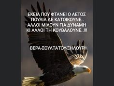 Bald Eagle, Quotes, Diy, Qoutes, Do It Yourself, Bricolage, Quotations, Handyman Projects, Diys