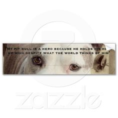 I support my pit bulls, I created this @ zazzle.com/knotth