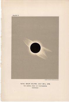 1900 solar eclipse original antique celestial astronomy print. $22.50, via Etsy.