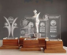 Trophy's made Combination of Wood and Perspex