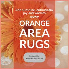 Ground your space with a colorful orange rug. If that's your plan, this collection gives you a range of styles, designs and prices. Orange Carpet, Orange Rugs, Orange Area Rug, Orange Home Decor, Orange House, Floor Decor, Home Decor Items, Rug Size, Area Rugs