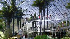 Bicentennial Conservatory, Botanic Gardens. Architecture Walking Tour of Adelaide, South Australia.