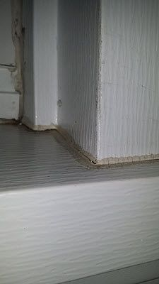 refrigerator gasket grows mold mold remediation mold exposure rh pinterest com