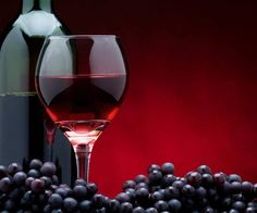 Vino Vino イタリアのワインイベント @ Export Marketing Services - 24-Maggio https://www.evensi.jp/vino-vino-イタリアのワインイベント-export-marketing-services/208822297