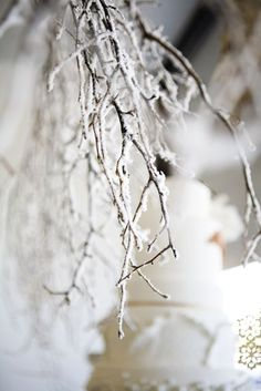 twigs with fake snow sprayed on them to give that frosted look - Wow, this is an awesome look too!