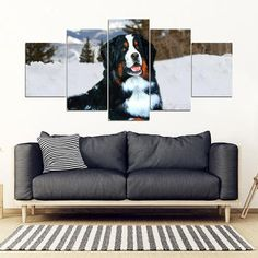https://thepetpeoplestore.com/collections/bernese-mountain-dog