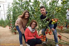 La familia Ramos Giménez con los tomates de Seminis. Jornada Ventero en Almería #agricultura #agriculture #farm #almeria #spain #farmer #farmlife #agricultores #invernaderos #greenhouse #seeds #tomatoes
