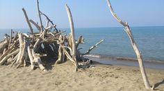 The lovely beach of Principina a mare, Grosseto, Tuscany
