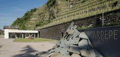 Intervista con Isabella Pellizzati Perego: Ar.Pe.Pe., la Valtellina e il nebbiolo - Persone - World Wine Passion
