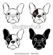 dog illustration tutorial에 대한 이미지 검색결과
