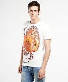 Symphysodon T-shirt SELVA  Fish T-shirt  design by SelvaStore