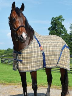 The Original 5/A Baker Blanket is back! Shop a great selection of Stable and Turnout blankets and sheets, coolers, anti-sweat sheet, bags, cases, dog blankets and items for the home!