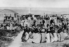 Northern Paiute Tribe | Paiute Tribe