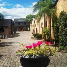 Vinícola Casa Valduga | 14 lugares que vão te dar vontade de visitar o Rio Grande do Sul