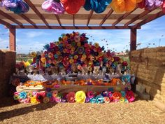 Altar de Muertos at Suzie's Farm, November 2013