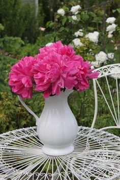 Watch a video about planting a bareroot Peony here: http://www.whiteflowerfarm.com/video-planting-peonies.html