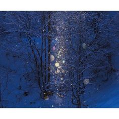 一度見たら忘れられない!寒くても見に行きたい日本の「雪景色」美瑛のダイヤモンドダスト