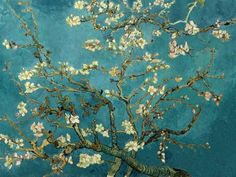 Almond Tree. Van Gogh.     I saw this in Amsterdam. He painted this for his brother. Van Gogh and his brother are buried next to each other... brotherly love.
