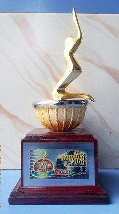 Best singer award 2015 from Jharkhand cine awards AISFA (Film: Hatboyla)