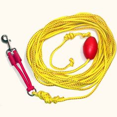 Outdoor Drag Line  Long Leash for Dogs with Bungee 33 Large -- Visit the affiliate link Amazon.com on image for more details.