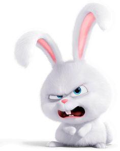 Кролик Снежок - персонаж мультфильма «Тайная жизнь домашних животных»