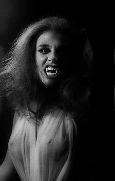 20 Best Fright night images | Fright night, Horror films, Horror