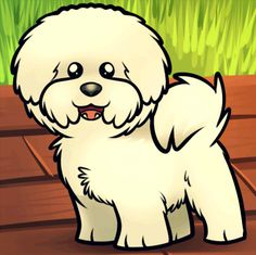 How to Draw a Bichon Frise, Step by Step, Pets, Animals, FREE Online Drawing Tutorial, Added by Dawn, January 23, 2013, 2:57:13 am