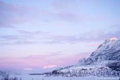 stora sjöfallet national park, sweden.