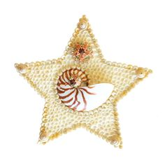 Nautilus Seashell Star Wall Art by TheMermaidsBox on Etsy