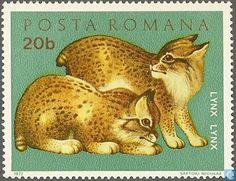 Postage Stamps - Romania [ROU] - Eurasian lynx