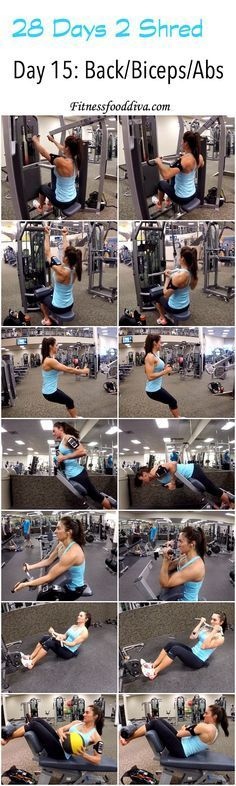 Day 15: Back/Biceps/Abs workout/video